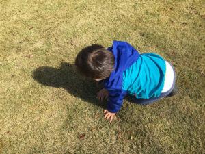 無料の遊具や芝生の広場